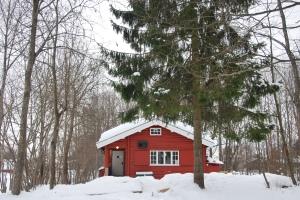 Rødt hus og grantrær.