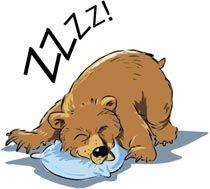 Bjørnen sover.
